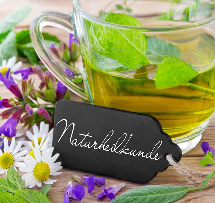 Holistic Health Retreat Mallorca Detox Naturheilkunde Heilpflanzen Tee
